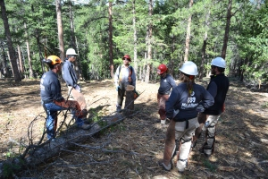 Sawyer Corpsmembers get chainsaw certified during orientation
